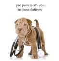 Veterinárne krmivo pre psov s citlivou ústnou dutinou