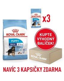 ROYAL CANIN Maxi Puppy 1 kg box+ 3 x kapsičky 140 g zdarma