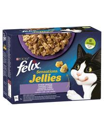 FELIX Sensations Jellies Lahodný výber v želé 72x85g