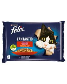 FELIX FANTASTIC Krmivo pre mačky v želé (králičie, jahňacie) 4x85g