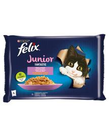 FELIX FANTASTIC Junior kura a losos v želé 24x85g