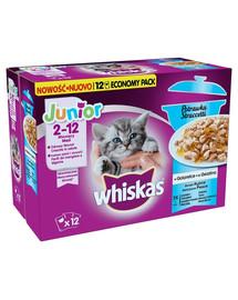 Whiskas Junior  v omáčke 12 x 85g
