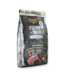 BELCANDO Finest Grain Free Puppy Poultry 12.5 kg