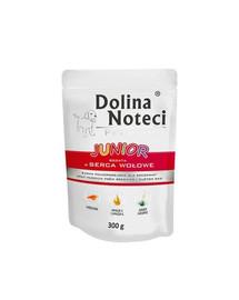 DOLINA Noteci Premium Junior Bohaté na bravčové srdce 300g