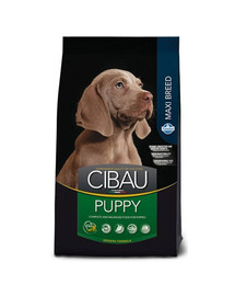 CIBAU Maxi Puppy 12 + 2 kg GRATIS