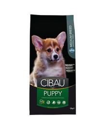 CIBAU Medium Puppy 12 + 2 kg GRATIS