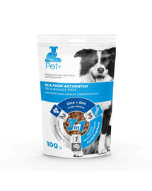 thePet+ Dog active treat 100 g