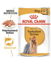 ROYAL CANIN Yorkshire Loaf 12 x 85g kapsička s paštétou pre jorkšíra