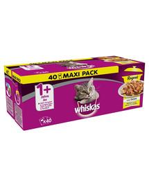 WHISKAS Whiskas Wet Food Ragout krmivo pre mačky v želé hydina 40x85g + 1 sáčok zadarmo
