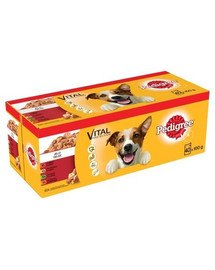 PEDIGREE Pouch In Jelly 40x100g