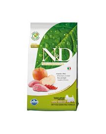Farmina N & D Dog Grain Free Adult Mini Boar & Apple 2,5 kg
