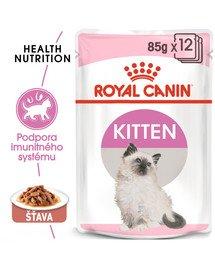 ROYAL CANIN Kitten Instinctive in Gravy 12 x 85g kapsičky pre mačiatka v šťave
