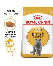 ROYAL CANIN British Shorthair Adult 400g granule pre britské krátkosrsté mačky