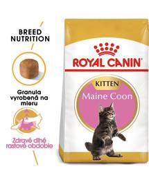 ROYAL CANIN Maine Coon Kitten 10kg granule pre mainské mývalie mačiatka
