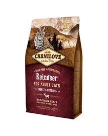 CARNILOVE Cat Grain Free Reindeer Adult Energy & Outdoor 6kg