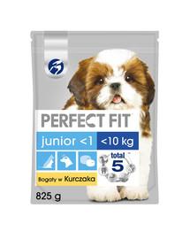 PERFECT FIT Junior (1+ rok) Pre malé rasy - Bohatý na kuracie mäso 5 x 825g