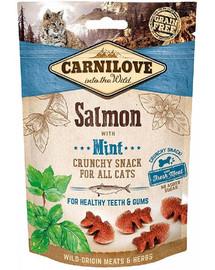 CARNILOVE Cat Crunchy Snack Salmon&Mint 50g