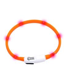 KARLIE LED obojok oranžový 35 cm