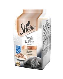 SHEBA Fresh & Fine Mini Mix chutí (hydina, morka, losos) 72 x 50g