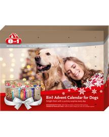 8IN1 Adventný kalendár pre psa
