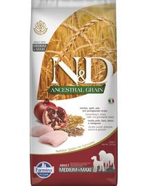 FARMINA N&D Ancestral Grain dog Adult Medium & Maxi Chicken & pomegranate 12 kg