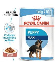 ROYAL CANIN Maxi puppy 10x140 g kapsička pre veľké šteňatá