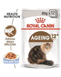 ROYAL CANIN Ageing +12 Jelly 12x85g kapsička pre staré mačky v želé