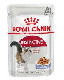 ROYAL CANIN Instinctive v želé 12x85g