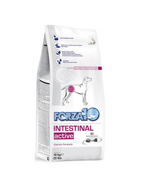 FORZA 10 Intestinal Active Nutraceutická výživa na problémy so zažívacím traktom pre psov 4 kg