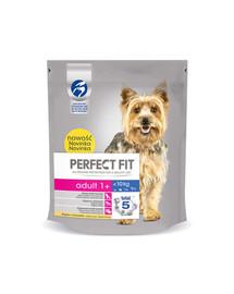 PERFECT FIT Senior 5x825g krmivo pre psy bohaté na kuracie mäso
