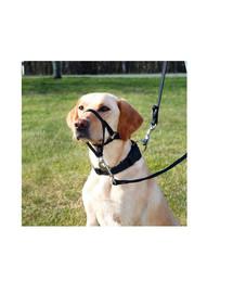 TRIXIE Top Trainer postroj pre psov S 22 cm / 35-42 cm