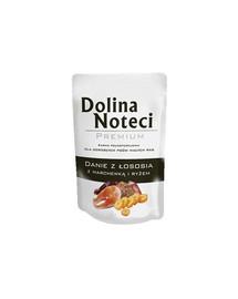 DOLINA NOTECI Miska s lososom, mrkvou a ryžou 100 g pre dospelých psov