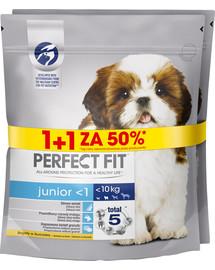 PERFECT FIT Junior XS - S 850 g x 3 ks krmivo pre psov s kuracím mäsom