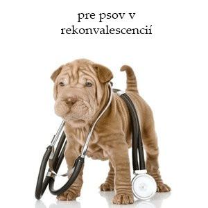 Veterinárne krmivo pre psov v rekonvalescencií