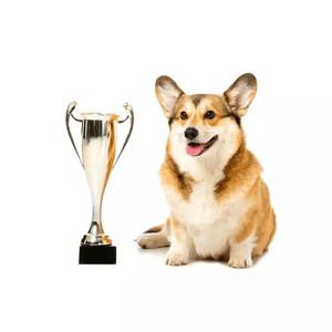 Krmivo pre psov: podľa rás
