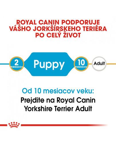 ROYAL CANIN Yorkshire Puppy 7.5 kg granule pre šteňa jorkšíra