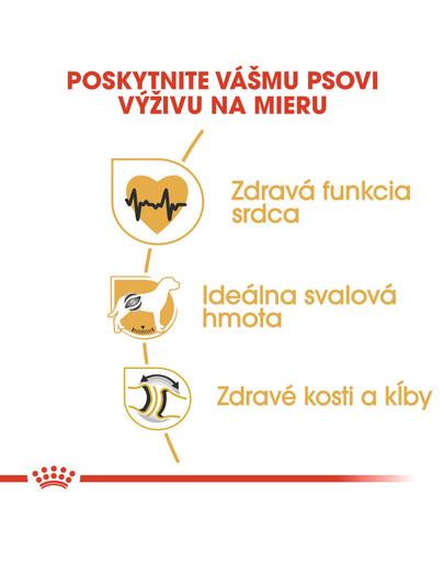 ROYAL CANIN Rottweiler 12 kg