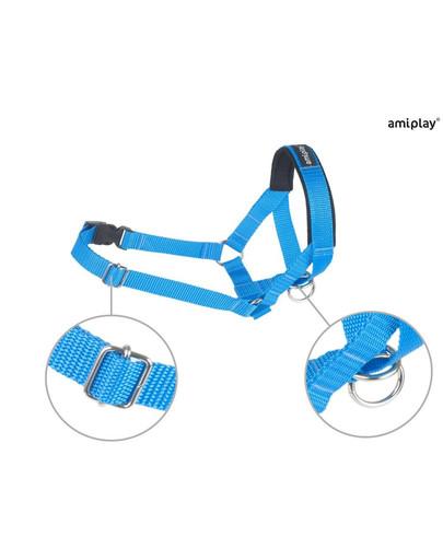 AMIPLAY Halter nylon n3 cocker spaniel 2 cm niebieski