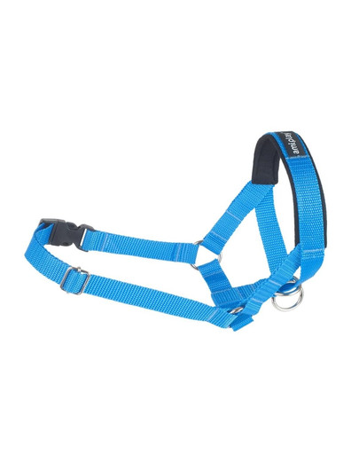 AMIPLAY Halter nylon n4 labrador niebieski
