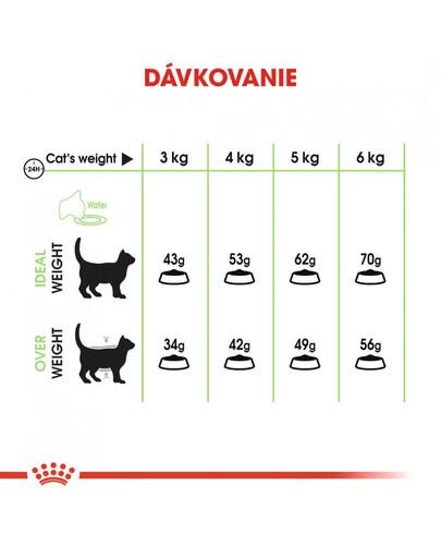 ROYAL CANIN Digestive care 10 kg granule pre mačky pre správne trávenie