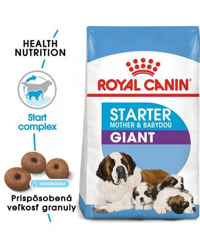ROYAL CANIN Giant starter mother & babydog 1 kg