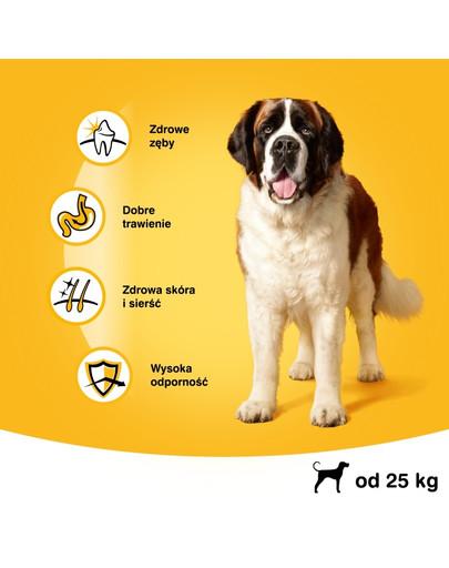 PEDIGREE Dry adult large dog hovädzie 15 kg