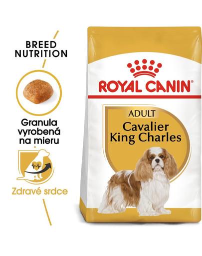 ROYAL CANIN Cavalier King Charles Adult 1,5 kg granule pre dospelého gavalier španiela