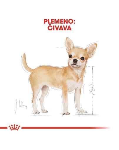 ROYAL CANIN Chihuahua Adult 500g granule pre dospelú čivavu