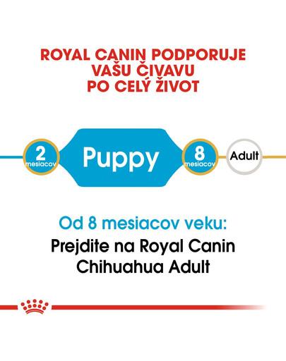 ROYAL CANIN Chihuahua puppy 1.5 kg granule pre šteňa čivavy