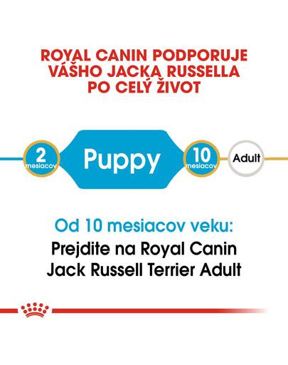 ROYAL CANIN Jack Russell Puppy 0.5 kg granule pre šteňa jack russell teriéra