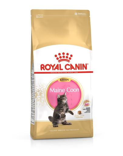 ROYAL CANIN Maine Coon Kitten 400g granule pre mainské mývalie mačiatka