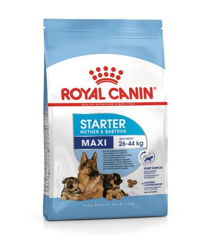ROYAL CANIN Maxi Starter Mother & Babydog 4kg granule pre brezivé alebo dojčiace suky a šteňatá