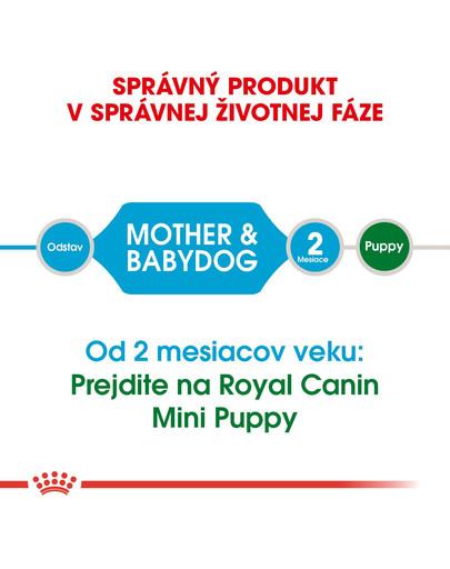 ROYAL CANIN Mini Starter Mother & Babydog 8,5kg granule pre brezivé alebo dojčiace suky a šteňatá