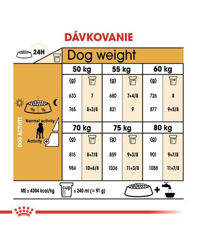 ROYAL CANIN Great Dane Adult 12 kg granule pre nemeckú dogu